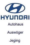 Autohaus Auswöger